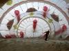 pb-120208-balloons-02.photoblog900.jpg