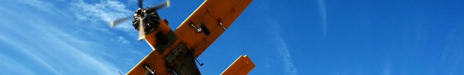 Skydive Rostov Прыжки с парашютом, полеты на дельталете